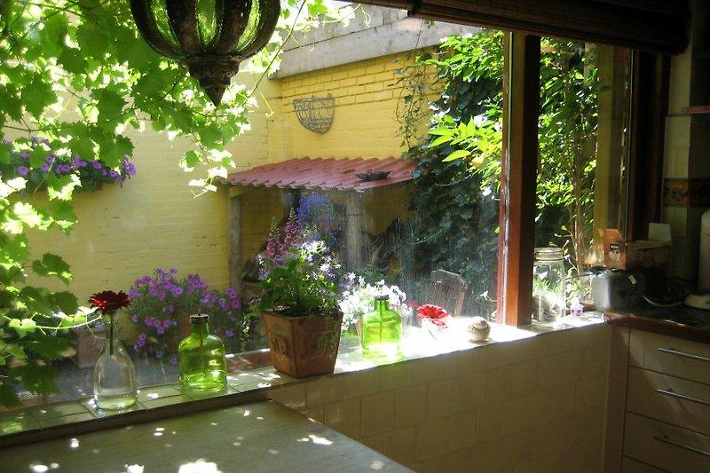 Casa mexicana Terrasse