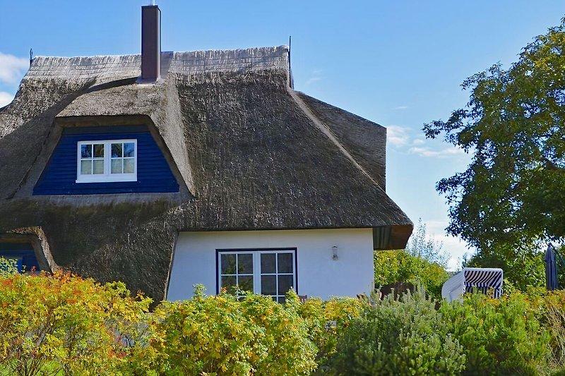 Das Walnusshaus auf Usedom