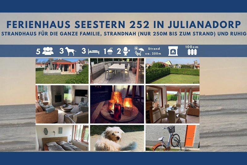 collage Seestern 252 fewo-toewe.de
