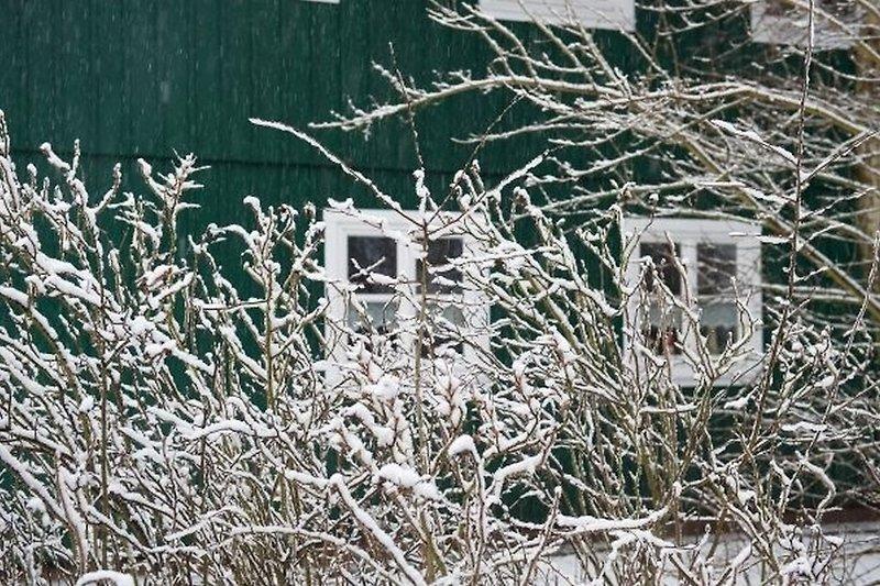 Haus Hummer im Winter