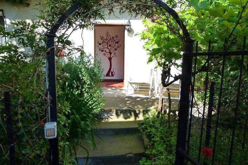 Casa Rosa Eingang
