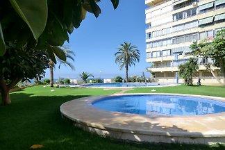 Apartment Sorolla seaside Benidorm