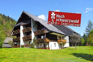 Holiday home in Menzenschwand