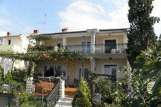 Apartment Petrica