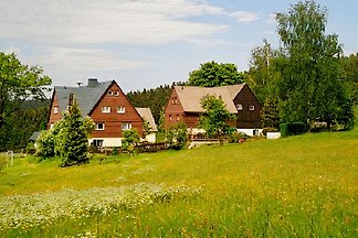 Holiday home relaxing holiday Rechenberg-Bienenmühle