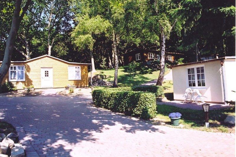 Fuchsbau im Hintergrund
