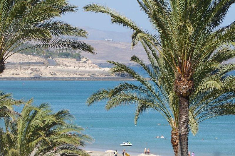 Strandnähe - Costa Calma