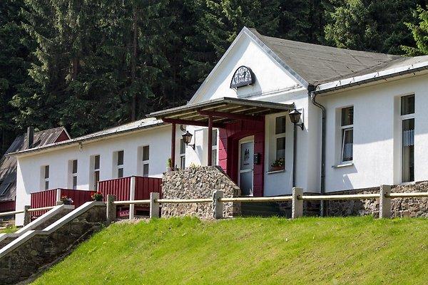 Appartement Erzgebirgsidyll in Breitenbrunn - Bild 1