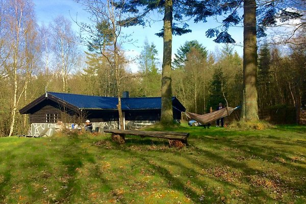 Holiday home in Gatten - picture 1