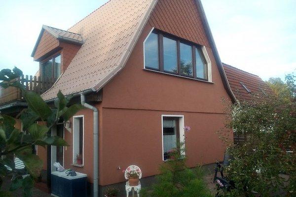 Ferienhaus Zander in Wesenberg - Bild 1