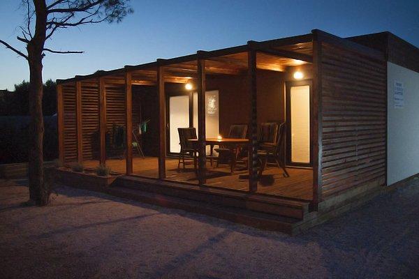 Sea Shell Mobile Home in Drage - Bild 1
