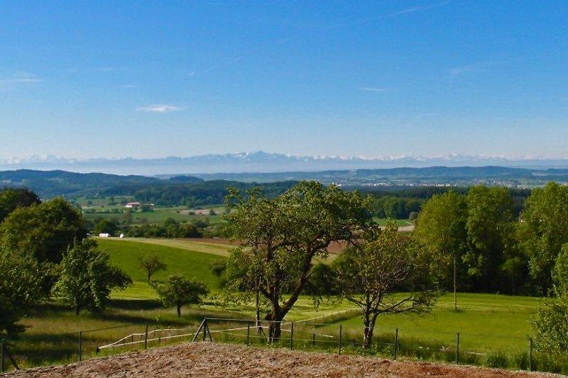 Ein 180° Panorama über den Linzgau bis tief in die Alpen erwartet Sie!