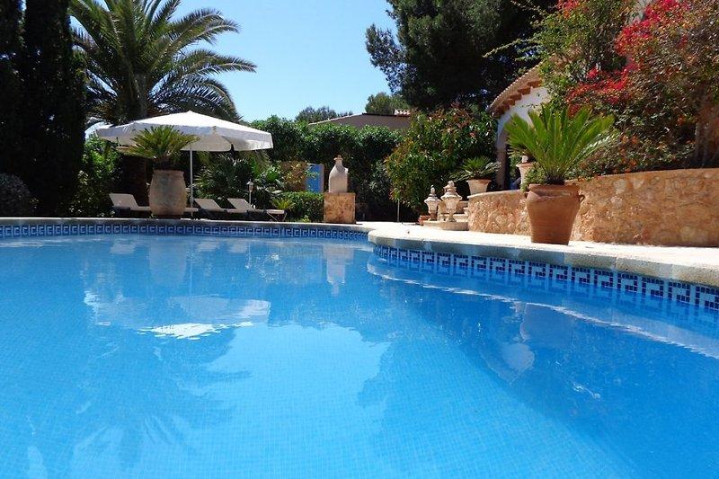 Ca. 9-10 Meter langer, 4-5 Meter breiter, sehr gepfleger Pool.