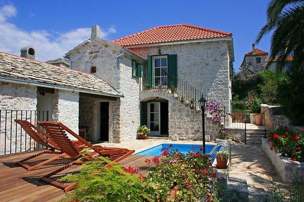 Villa Maruka in Mirca - picture 1
