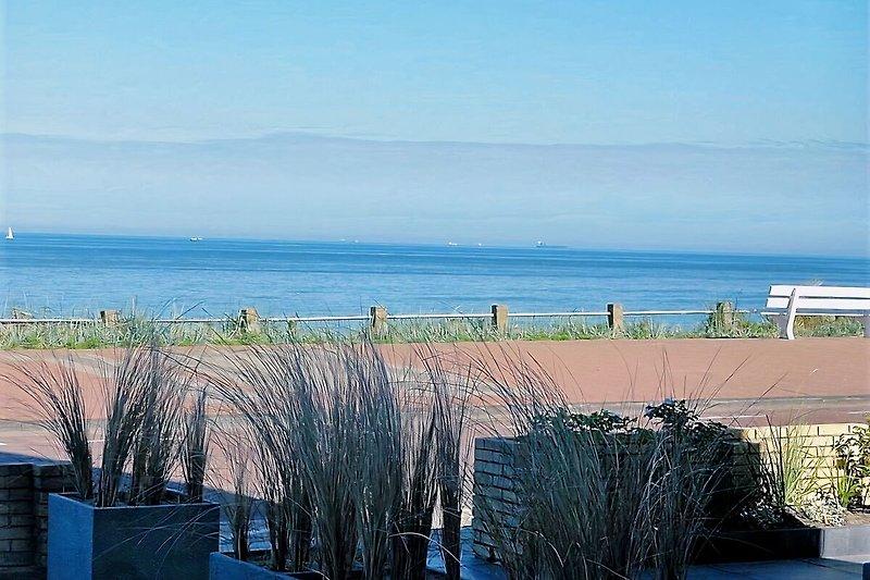 Blick aufs Meer von der Terrasse