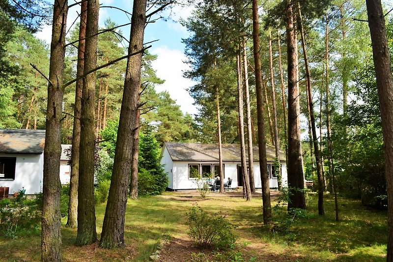 Blick auf eines unserer Ferienhäuser im Grünen