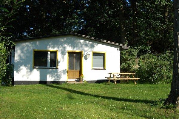 Accommodatie in brandenburg an der havel accommodatie in for Asia cuisine brandenburg havel