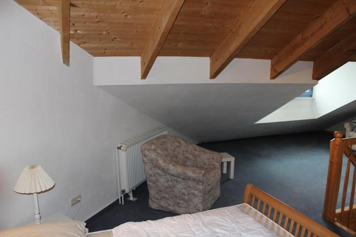 urlaub mit hund im architektenhaus ferienwohnung in wolgast mieten. Black Bedroom Furniture Sets. Home Design Ideas