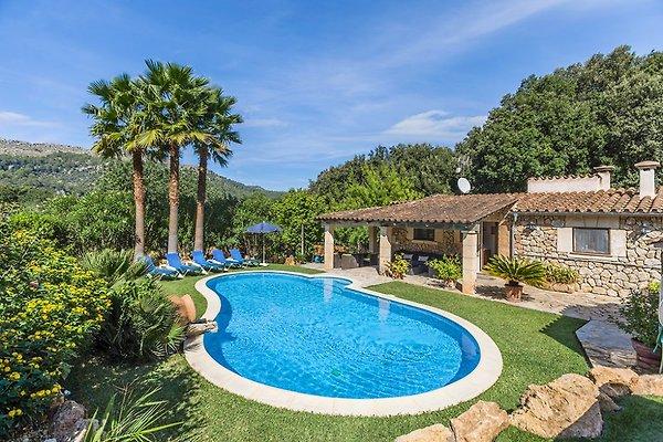 Pollensa 3590 mit pool whirlpool ferienhaus in for Whirlpool garten mit leeb balkone preise
