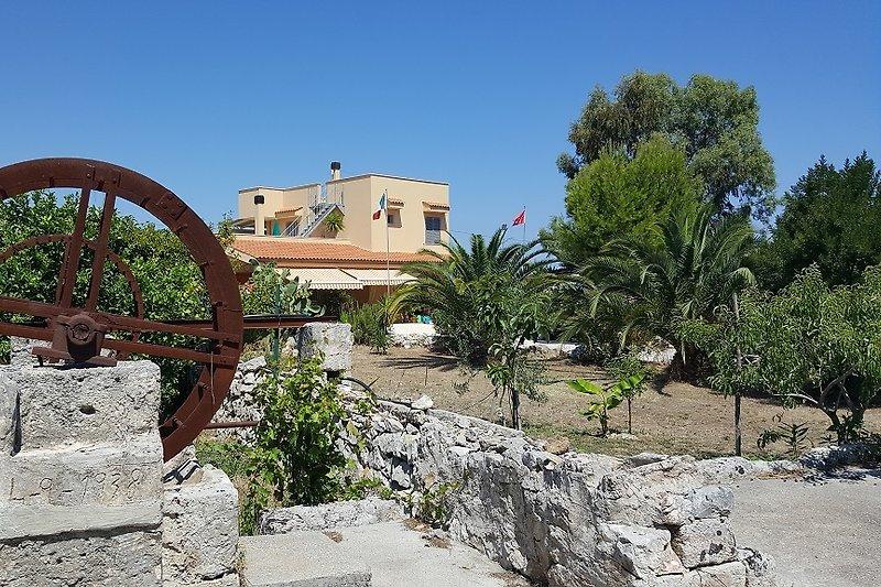 Villa-Salvino / Gartenanlage