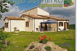 Poggio San Pietro, Gelso