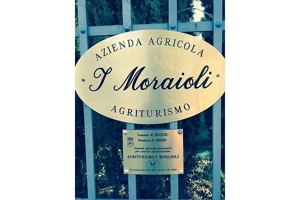 "<span style=""font-size:smaller;"">Compañía Agriturismo I Moraioli</span><br> Sig. F. Mattii"