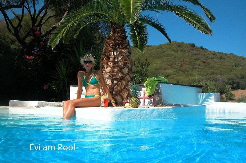 Pool  Solarbeheitzt