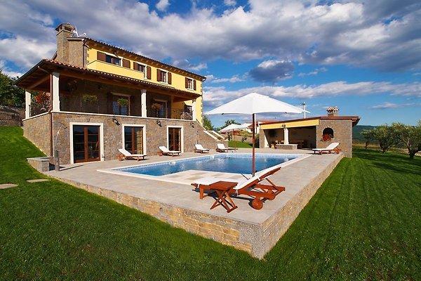 Villa Maslina  in Buzet - Bild 1