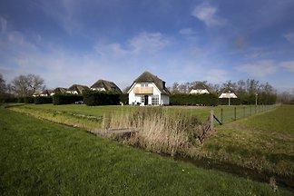6 personas Villa Waddenduyn, Texel