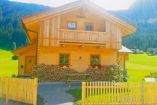 Holiday home relaxing holiday Gosau