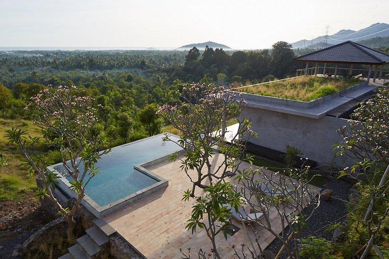 Schwimmbad und Terrasse