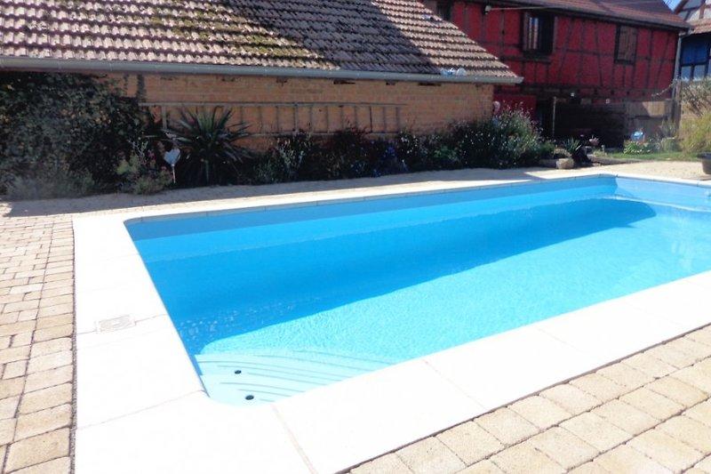 piscine avec bains de soleil