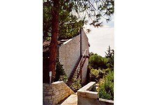 Villa Ola & Pit - Garden area