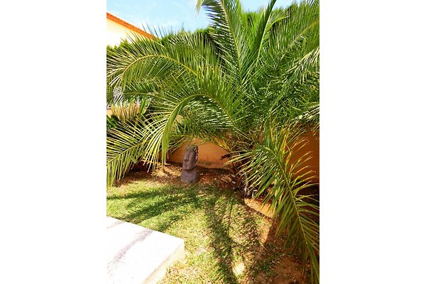 Casa moderna con piscina privata - Casa vacanze in Els Poblets ...