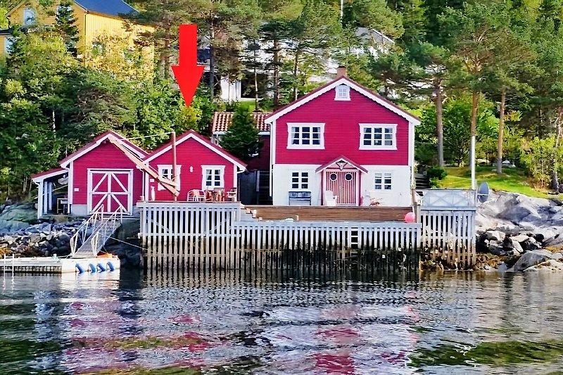 Ansicht vom Fjord