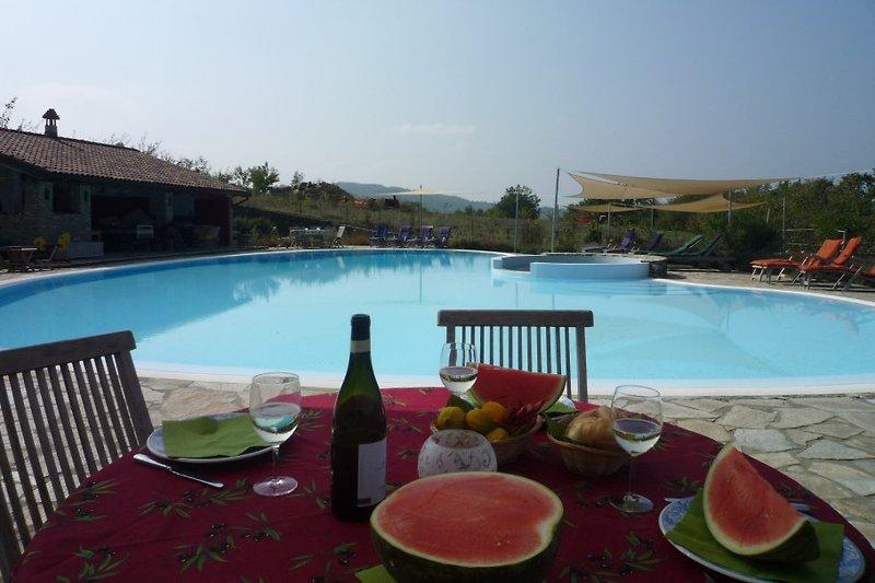 Grosser Pool (20 x 14 m) mit sep. Babybecken und Poolhaus