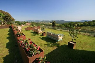Holiday home relaxing holiday Montecatini Val di Cecina