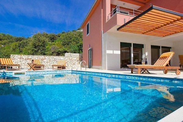 Luxusvilla am meer mit pool  Luxus-Villa mit Pool, 20 m zum Meer - Ferienhaus in Vinisce mieten