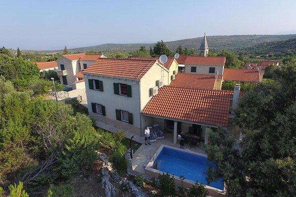 Nuova casa di charme con piscina, Brac in Nerezisca - immagine 1
