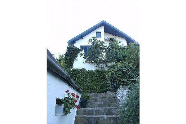 Haus am Meer in Albena - immagine 1