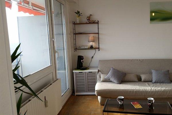 appartement vue d gag e proximit banhfoff appartement mulhouse louer. Black Bedroom Furniture Sets. Home Design Ideas