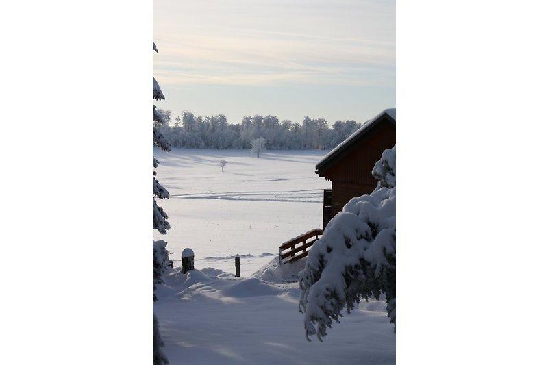 Klassik Haus mit direkter Ski Loipen Anbindung