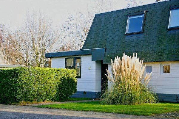 Ferienhaus-Beckmann mit Sauna in Breskens - Bild 1