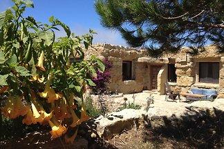 Quinta das Asas - Stone Lodge