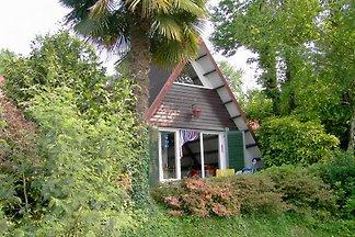 House A45