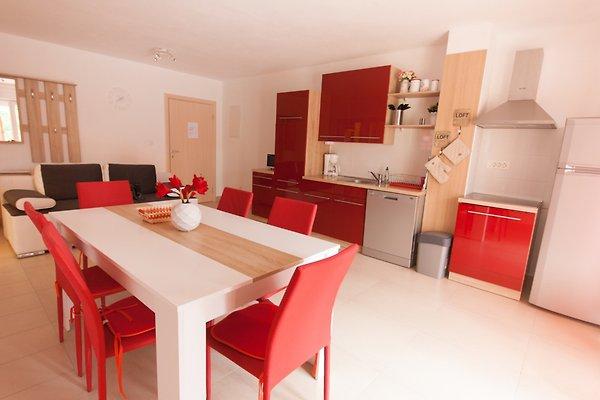 Apartments Knego in Silo - Bild 1