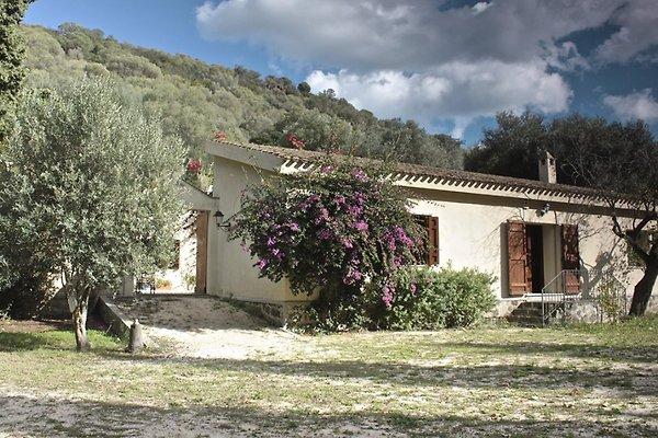 villa zarule ferienhaus in orosei mieten. Black Bedroom Furniture Sets. Home Design Ideas