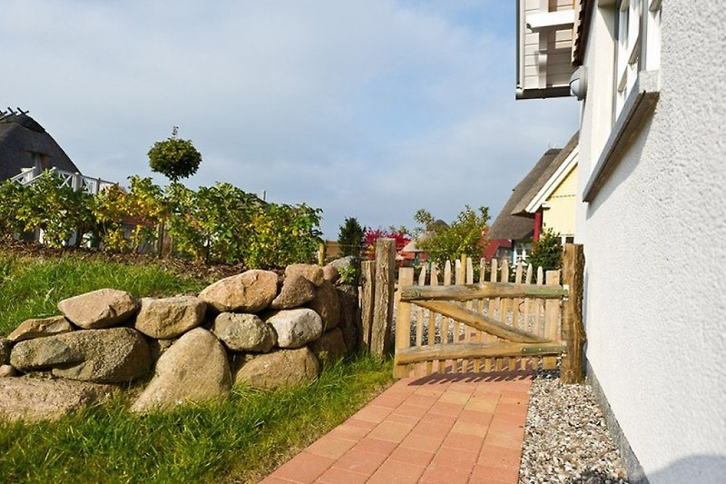 Friesenmauer mit Wildrosen und Eingang zum Garten