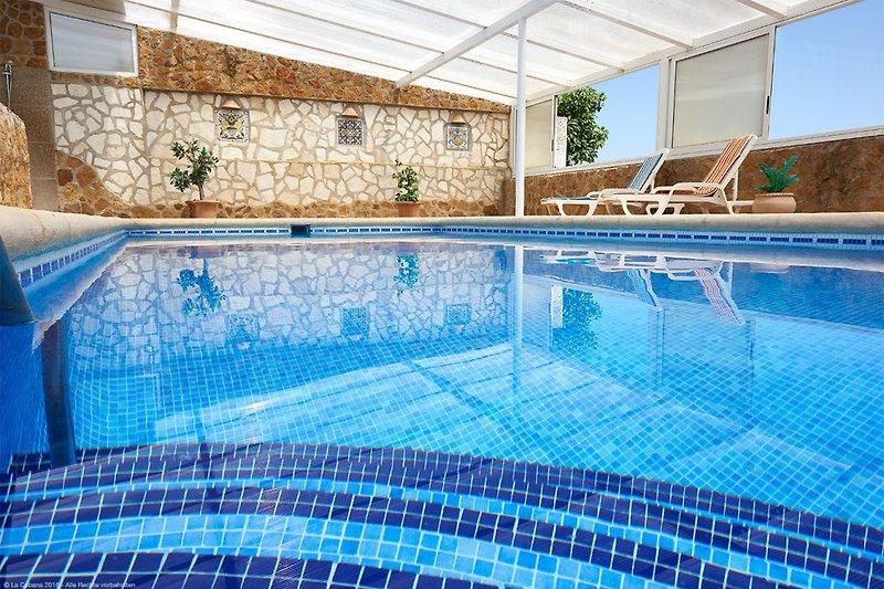 28° an 365-Tagen, der Ganz-Jahres-Swimmingpool