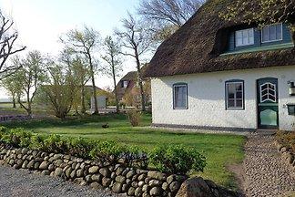 Deichhof-Föhr Wohnung1